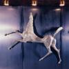 Cavallo rampante (1962, bronzo, cat. 588 bis), sala di soggiorno di prima classe